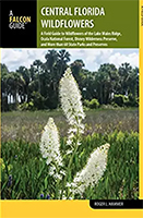 Central Florida Wildflowers: A Field Guide to Wildflowers of the Lake Wales Ridge, Ocala National Forest, Disney Wilderness Preserve, and More than 60